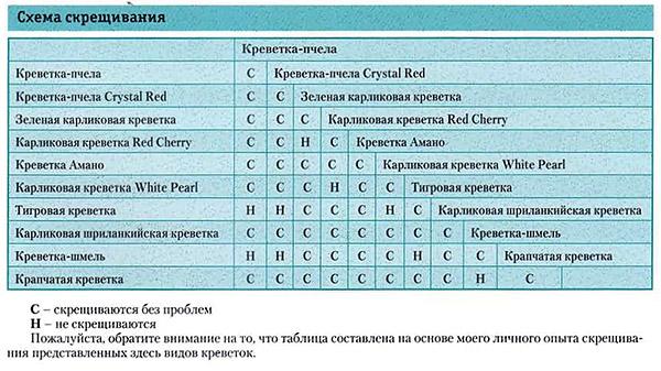 Схема скрещивания креветок
